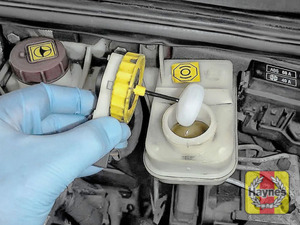Illustration of step: If the level needs topping up - WEARING GLOVES - Carefully open the cap, have a paper towel ready to catch any drips as brake fluid is corrosive! Now securely replace and tighten cap - step 3