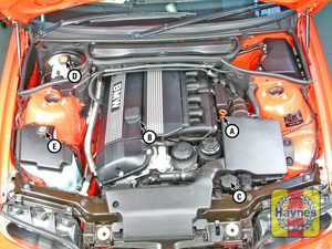 Illustration of step:  6-cylinder engine (2 - Underbonnet check points - step 2
