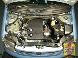 Illustration of step:  Panda petrol engine (1 - Underbonnet check points - step 1