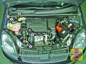 Illustration of step:  Diesel engine - Duratorq 1 - Underbonnet check points - step 1