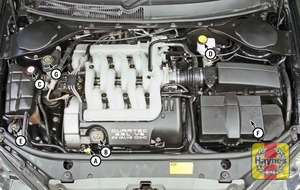 Illustration of step:  2 - Underbonnet check points - step 2