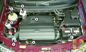 Illustration of step:  2 - Underbonnet check points - step 3