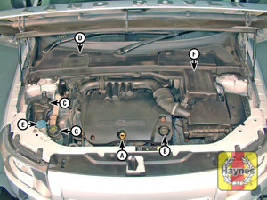 Illustration of step:  2 - Underbonnet check points - step 1