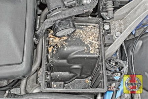 Illustration of step: Check air filter box for debris - step 11