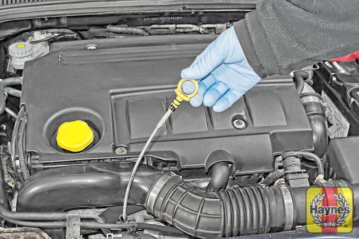 Suzuki Sx Checking Transmission Oil