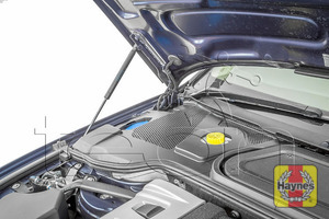 Illustration of step: The bonnet has gas struts to safely support the bonnet - step 4
