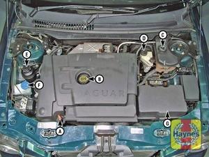 Illustration of step:  Diesel engine (2 - Underbonnet check points - step 2