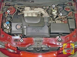 Illustration of step:  Petrol engine (2 - Underbonnet check points - step 1