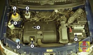 Illustration of step:  2 - Underbonnet check points - step 2