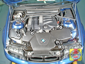 Illustration of step:  4-cylinder engine (2 - Underbonnet check points - step 1
