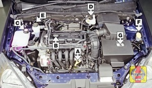 Illustration of step:  Petrol engine (1 - Underbonnet check points - step 1