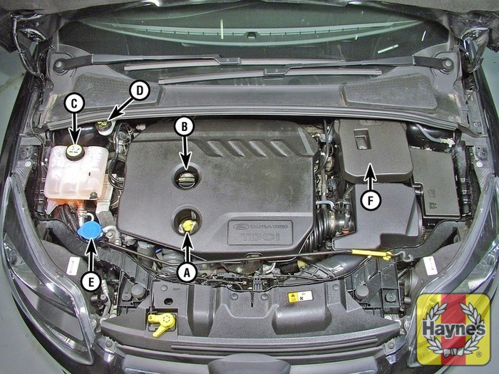 Ford Focus Oil Change >> Ford Focus (2011 - 2014) 1.6 TDCi - Fluid level checks - Haynes Publishing