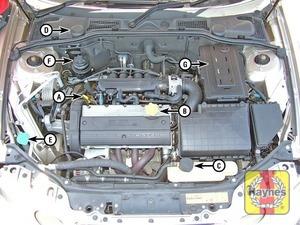 Illustration of step:  1 - Underbonnet check points - step 1
