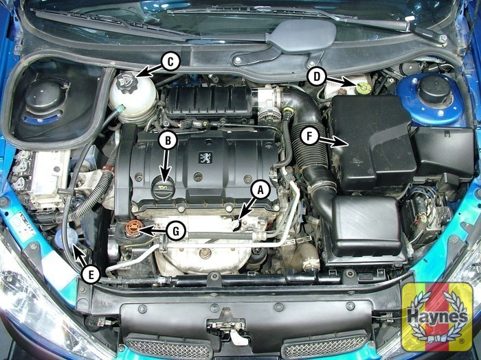 Illustration Of Step: 1   Underbonnet Check Points   Step 1