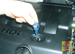 Illustration of step: Wipe all the oil from the end of the dipstick with a paper towel - Car care - step 13