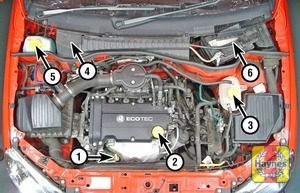 Illustration of step:  1 - Underbonnet check points - step 1