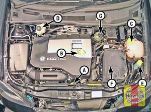 Illustration of step:  2 - Underbonnet check points - step 4