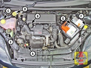 Illustration of step:  Diesel engine - Duratorq 1 - Underbonnet check points - step 3