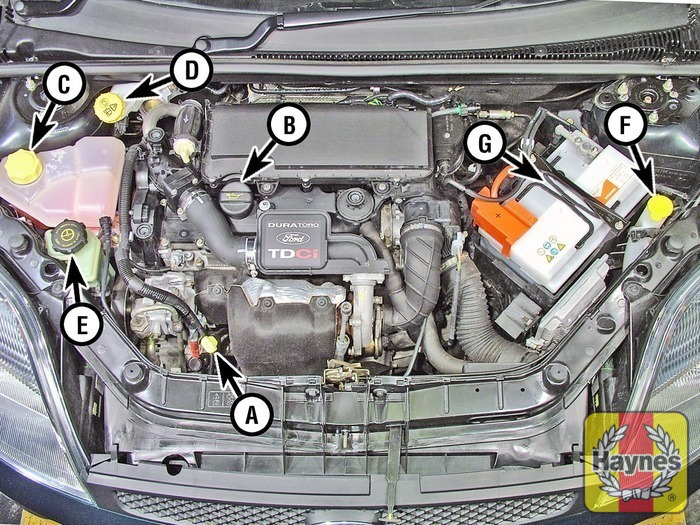 Ford fiesta  v fluid level checks haynes