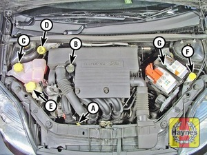 Illustration of step:  Petrol engine - Duratec 16V A Engine oil level dipstick B Engine oil filler cap C Coolant reservoir (expansion tank) D Brake and clutch fluid reservoir E Power steering fluid reservoir F Washer fluid reservoir G Battery  - Underbonnet check points - step 2
