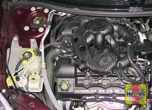 Illustration of step: Locate the windshield washer fluid reservoir - step 1