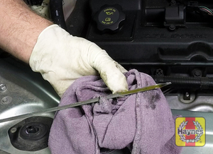 Illustration of step: Withdraw the dipstick and wipe it clean with a paper or cloth towel - step 2